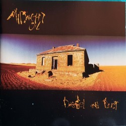 CD MIDNIGHT OIL DIESEL AND...